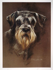 SCHNAUZER MINI STANDARD DOG ART LIMITED EDITION PRINT - by the late Mick Cawston