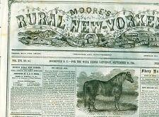 Newspaper Civil War Wirz Andersonville Trial -Fenians & Ireland Rebellion 1865