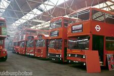 London Transport T167 etc Hendon open day 1980 Bus Photo
