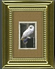 HEDWIG SNOWY OWL HARRY POTTER - A U.S. GLASS FRAMED POSTAGE STAMP MASTERPIECE!