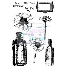 Sweet Dixie Clear Stamps Daisy and Bottles flowers sentiments frame