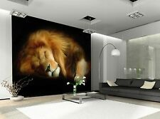 Lion Sleeping Wall Mural Photo Wallpaper GIANT DECOR Paper Poster Free Paste