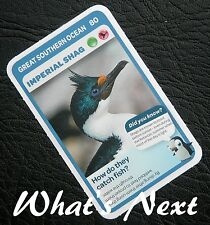 Woolworths   AUSSIE ANIMALS   Card 80/108 GREAT SOUTHERN OCEAN Imperial Shag