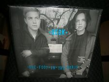 BECK **One Foot in the Grave 15th Anniversary Edition **New Record LP Vinyl