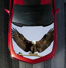 H47 EAGLE Hood Wrap Wraps Decal Sticker Tint Vinyl Image Graphic