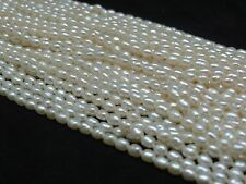 White Cream 3.5-4mm Natural Freshwater Pearl Strand Rice Oval Teardrop Shape A