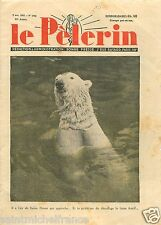 Portrait Ours Blanc Polaire Ursus maritimus Polar Bear 1937 France ILLUSTRATION