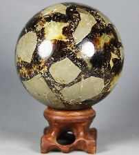 330g Polished DRAGON SEPTARIAN sphere Crystal w/Rosewood Stand Madagascar
