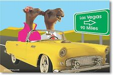 Las Vegas - Camels Bound For Love - Funny Humor POSTER