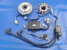 NICE Rotax Complete CDI Ignition 462 532 582 583 670 ETC Rotax Engines DONT MISS