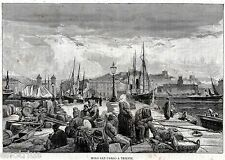 Trieste: Molo San Carlo. Tergeste. Friuli-Venezia Giulia. Stampa Antica. 1892