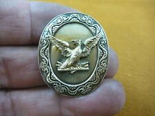 (b-bird-58) Bald eagle flying bird oval scrolled trim repro BRASS pin pendant