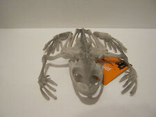 Frog Skeleton - Laboratory set prop/decoration - Halloween Monster Stuff...