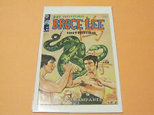 OLD RARE #41 BRUCE LEE MEXICAN COMIC-BOOK MARTIAL ARTS,HARD TO FIND