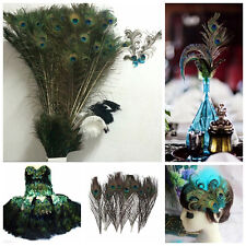 10pcs Natural Real Peacock Tail Feathers About 10-12 Inches Home Party Decor US