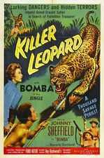 Killer Leopard Poster 01 Metal Sign A4 12x8 Aluminium