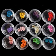 60pcs 12 Colors 3D Nail Art Acrylic Glitter Dried Flowers Flake Manicure Set Tip