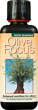 300ml - Olive Focus Plant Food - Concentrated Nutrients for Olives