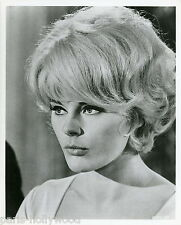 ELKE SOMMER THE MONEY TRAP 1965 VINTAGE PHOTO ORIGINAL