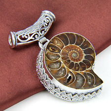 Free Shipping Cute Natural Ammonite Fossil Gems Retro Silver Necklace Pendant 2""