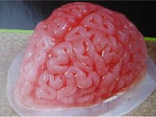 NWT ~ LARGE REUSABLE PLASTIC HUMAN BRAIN HALLOWEEN JELLO MOLD WALKING DEAD PARTY