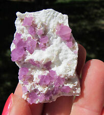 Hot, Hot, Hot !! Cranberry Pink Mexican Octahedral Fluorite Crystals On Matrix