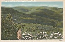 LAM(T) Black Forest, PA - Checkered Sunshine Over Hills