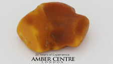 NATURAL BUTTERSCOTCH RAW UNPOLISHED BALTIC AMBER PIECE 14.5 GRAMS-RS019  RRP£150