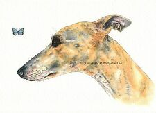 Whippet greyhound dog Watercolour/ink Painting.
