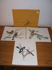 1978 Collector's Portfolio of Song Birds / Sherm Pehrson (3 Prints)