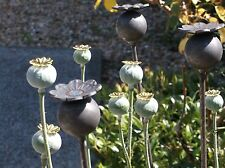 3 Plant Stakes, Metal,Decorative, 1Mtr Long, Poppy Seed Head Plant Support