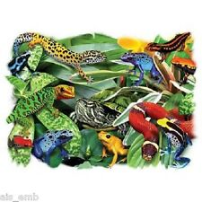Dart Frogs Reptiles HEAT PRESS TRANSFER for T Shirt Sweatshirt Tote Fabric 261f