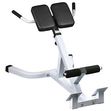 New Extension Hyperextension Back Exercise AB Bench Gym Abdominal Roman Chair