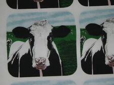 """fabric panel, HOLSTEIN COW, 6 fabric designs 8""""x8"""" use for potholders - NEW"""