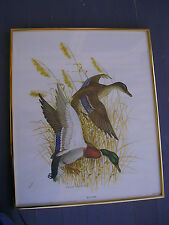 "CHARLES E MURPHY,MALLARDS PUBLISHED BY ""RUDOLF LESCH FINE ARTS"",19"" BY 23"""