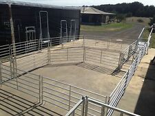 Sheep Or Goat Yard For 90 Head