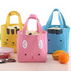 Portable Insulated Thermal Picnic Lunch Box Carry Tote Storage Bag Case