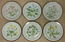 Counterpoint WILDFLOWERS Salad plate set of 6 different flowers