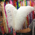 Wholesale!10/50/100pcs High Quality Natural OSTRICH FEATHERS 6-24 inch/15-60cm