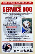 HOLOGRAPHIC SERVICE DOG ID CARD / BADGE ASSISTANCE ANIMAL ADA TAG 0 RED