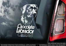 Chocolate Labrador - Car Window Sticker - Lab Retriever Dog on Board Sign - TYP3