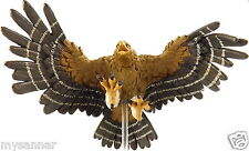 D&D Mini GIANT EAGLE (Roc) DF Pathfinder Dungeons & Dragons Miniature