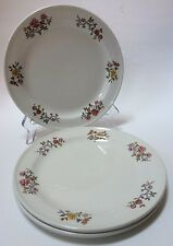 3 Dunn Bennett Co Floral Plates Vitrified Hotel Ware England Royal Doulton Group