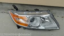d60507 Honda Odyssey 2011 2012 2013 RH halogen headlight OEM