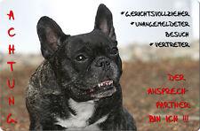 Französische BULLDOGGE - A4 Metall Warnschild Hundeschild SCHILD - FBD 05 T10