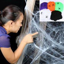 Stretchy Spider Web With 2 Spiders Halloween Props Home Party Decoration Auction