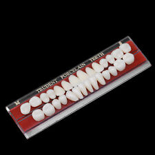 Hot 1 Set 24 # Porcelain Teeth Alloy-Pin Tooth Dental Materials Dentures Colors
