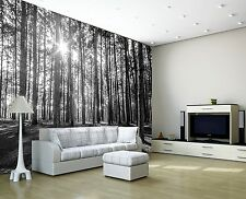 SUNNY SPRING FOREST MORNING TREES Photo Wallpaper Wall Mural WOODLAND DECOR