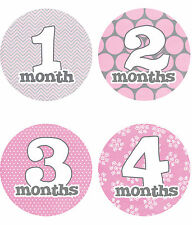 """Baby Girl Monthly Stickers NEW 12 months + Just Born Gray/Pink/White 4"""" circle"""