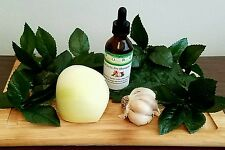2 oz 1 Month Supply! Onion garlic pre-shampoo treatment hair growth
